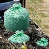 Biodegradable & Compost