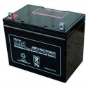 AGM Battery Upgrade (1) 12V 130-140AH for Vestil Narrow Mast Stackers