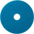 Tampon de récurage bleu de17 po -5 par boîte