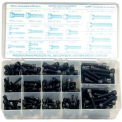Socket Head Cap Screw Assortment - 6-32 to 1/4-28 - Steel - 6 Items, 190 Pcs - Made In USA