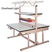 Overhead Light Kit for Double Sided Flexline Unit