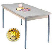 "Allied Plastics Utility Table - 36""W X 72""L - Gray"