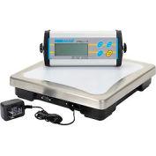 "Adam Equipment CPWplus 75 Digital Bench Scale 165lb x 0.05lb 11-13/16"" x 11-13/16"" Platform"
