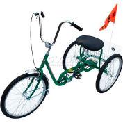 Tricycle industriel 250 Lb capacité 3 vitesse frein à rétropédalage vert