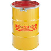 Skolnik HM1002 10 Gallon Open Head Carbon Steel Salvage Transport Overpack Drum