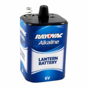 Rayovac® 806 6V printemps Terminal D alcaline pile lanterne, qté par paquet : 6