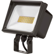 QTE Lithonia conduit P2 40K 120 YK DDB LED Flood, 40W, 120V, 4000 Lumens, 4000K, Yoke Mount, Bronze foncé