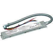 "Dual-Lite PLD10M Emergency LED Battery, 10W Constant Output, Galvanized Steel w/ One 24"" Conduit"