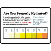 """Accuform MRST533VS Safety Hydration Card, ARE YOU PROPERLY HYDRATED, 7""""H x 10""""W, Adhesive Vinyl"""