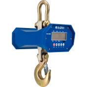 Global Industrial™ Heavy Duty LCD Digital Crane Scale With Remote, 6,000 lb x 1 lb