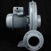 Atlantic Blowers Centrifugal Blower ABC-100, 1 Phase, 0.33 HP