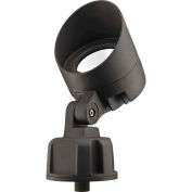 Lithonia OLBF 8 K 50 DDB M6 Bullet LED Flood - Flood optique 120V 840 Lumens