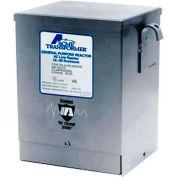 Acme T181223 électrique environnement rude série, 10000 VA, 240 X 480 V primaire, secondaire de 120 V