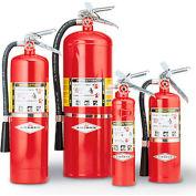 Amerex Fire Extinguisher - 2-1/2 Lb. Capacity