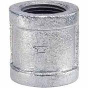 3/4 po galvanisé couplage malléable 150 PSI sans plomb