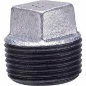 1-1/2 de bouchon fourrés malléable galvanisée 150psi sans plomb