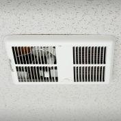 TPI ventilateur plafond radiateur H3032DWBW - 2000/1500/1000/750W 240/208V