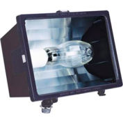 Lithonia F100ML 120 M6 100w Metal Halide Flood W/ Lamp Included