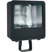 Lithonia F250ML SCWA 250w haloïde en métal Flood W / lampe inclus
