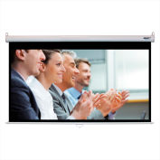 "HamiltonBuhl Manual Projector Screen - 92"" Diagonal - HDTV Format - White Frame"