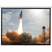 60 x 60 Manual Wall Matte White Fabric Square Format Projector Screen