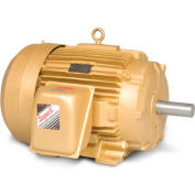 Baldor-Reliance Motor EM4316T, 75HP, 1780RPM, 3PH, 60HZ, 365T, 1482M, TEFC, F1