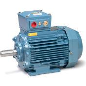 Baldor-Reliance Metric IEC Motor,Flameproof,MM09114-EX3,3PH,230/460V,1500RPM,1.1/1.5 KW/HP,50HZ,D90