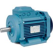 Baldor-Reliance Metric IEC Motor, MM10034-PP,3PH,230/400/460V,1500/1800RPM,3/4 KW/HP,50/60Hz, D100
