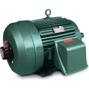 Baldor-Reliance Inverter/Vector Motor, ZDVSM4110T, 3PH, 40HP, 1775RPM, 230/460V, TEFC, 324T