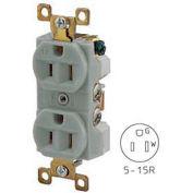 Bryant BRY5262GRY TECHSPEC® Industrial Grade Duplex Receptacle, 15A, 125V, Gray
