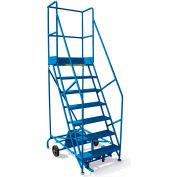 """Canway 50 degrés sécurité pente rouler Ladder, étape 9, 132"""" H, tourne en Place"""