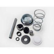 Guardair 500K01, 500K01 Valve Repair Kit for Force 5 Inforcer & HydroForce