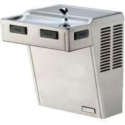 Halsey Taylor ADA fontaine d'eau potable, Non réfrigérés, filtrée, HACDPV-WF