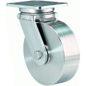 Hamilton® Workhorse Stainless Swivel 4 x 2 Poly-Tech Delrin 750 Lb. Caster
