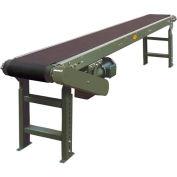 "Hytrol® Model TA 16'L Slider Bed Conveyor 16TA24 115V/1PH - 20""W Belt"