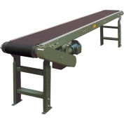 "Hytrol® Model TA 21'L Slider Bed Conveyor 21TA16 115V/1PH - 12""W Belt"