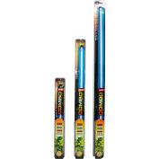 SunBlaster SL0900303 T5HO Fluorescent Grow Light Kit 39W, 6400K, NanoTech Reflector, 3'