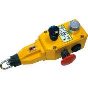 IDEM 142010 GLS Rope Pull Switch W/E Stops, 2NC 1NO, 1/2NPT, Die Cast