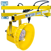 "Ideal Warehouse Innovations DL40-PL1 LED Module Dock Light 40"" Arm, 810 Lumens, 5500K, 8' cord"