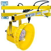 "Ideal Warehouse Innovations DL40-PL1 LED Module Dock Light 40"" Arm, 810 Lumens, 5500K, 8' cord"