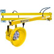 "Ideal Warehouse Innovations DL60-PL1 LED Module Dock Light 60"" Arm, 810 Lumens, 5500K, 6' cord"