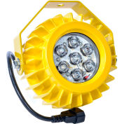 Ideal Warehouse Innovations HDLED LED Dock Light Head Only, 17.6W, 1000 Lumens, 5500K