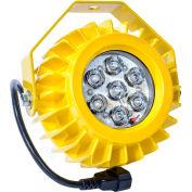 Ideal Warehouse Innovations HDLED LED Dock Light Head Only, 17.6W, 1000 Lumens, 5500K