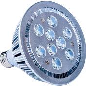 Ideal Warehouse Innovations 423010 LED Dock Light Bulb, 27W, 1088 Lumens, 6500K