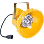 Ideal Warehouse Innovations PL1HEAD Dock Light Head Retrofit & LED Module, 810 Lumens, 5500K
