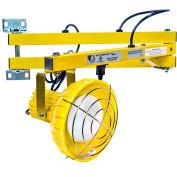 "Ideal Warehouse Innovations DL40-P Standard Dock Light 40"" Arm, Incandescent, 8' cord"