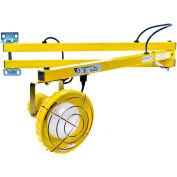 "Ideal Warehouse Innovations DL60-P Standard Dock Light 60"" Arm, Incandescent, 6' cord"