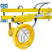 "Ideal Warehouse Innovations FLDL40-P Flexible Dock Light 40"" Arm, Incandescent, 8' cord"