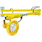 "Ideal Warehouse Innovations FLDL60-P Flexible Dock Light 60"" Arm, Incandescent, 6' cord"