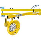 "Ideal Warehouse Innovations DL60-PLED Standard LED Dock Light 60"" Arm, 1088 Lumens, 6500K, 6' cord"